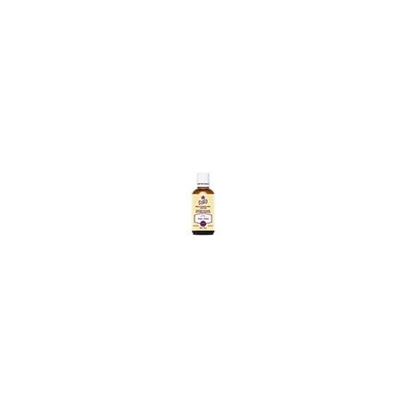 Extract Elderflower