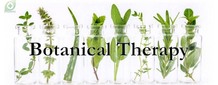 Botanical Therapeutic products